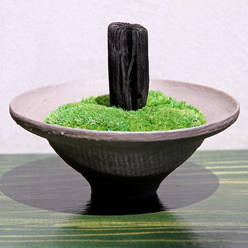 sukizumi11045